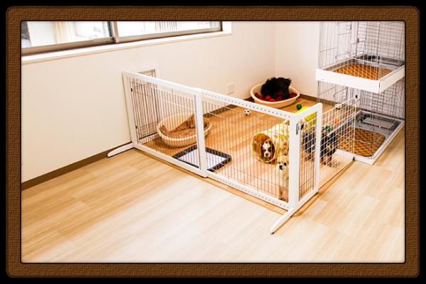 ドッグサロン フルール 室内スペース写真