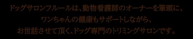 ドッグサロンフルールは、動物看護師のオーナーを筆頭に、ワンちゃんの健康もサポートしながら、お世話させて頂く、ドッグ専門のトリミングサロンです。