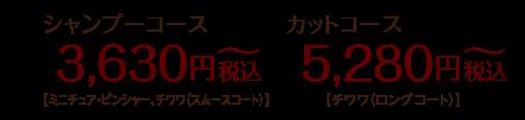 シャンプーコース:3,300円〜【ミニチュア・ピンシャー、チワワ(スムースコート)】カットコース:4,800円〜【チワワ(ロングコート)】