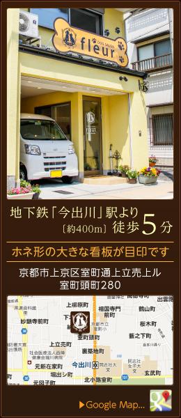 ドッグサロンフルーレは地下鉄今出川駅より徒歩5分(約400m)京都市上京区室町通上立売上ル室町頭町280