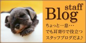 耳寄りで役立つドッグサロンフルール スタッフブログ